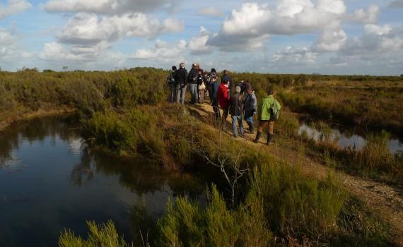 Sortie sur la réserve naturelle du Pinail lors du CA 2014 RNF