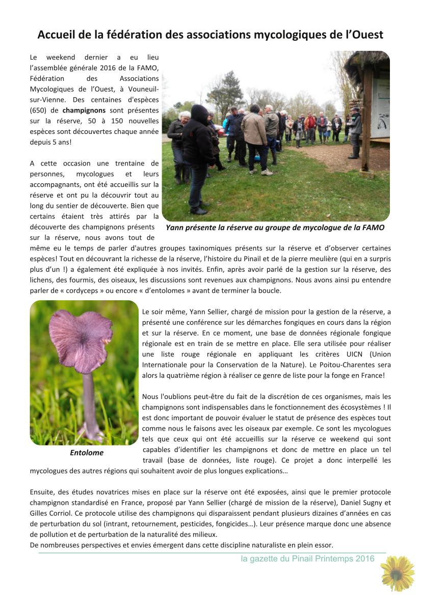 gazette_pinail_n11_p4
